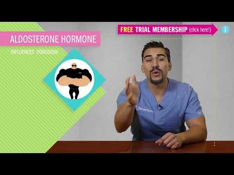Hyperkalemia - Fluid & Electrolytes Nursing Students - patho, (part 2 of 5)