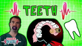 Download Operation Ouch - Teeth & Braces | Human Head Video