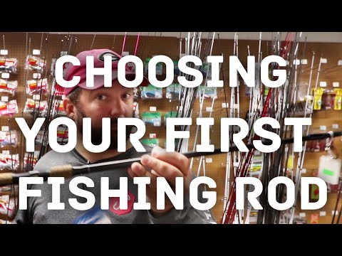 Bass Fishing for Beginners - How to Choose a Fishing Rod - How to Fish