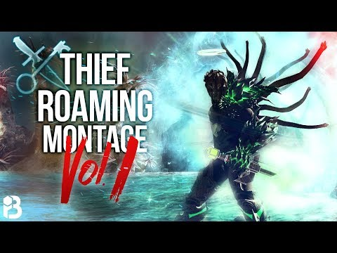 GW2 | D/D Core Thief | WvW Roaming Montage vol  1 | Roborkop