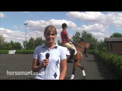 How to do Dressage for Eventing-  How to learn your test.mp4