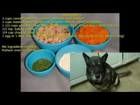 Cooking Salmon and Sweet Potato Treats for Dogs |  ivet dog food