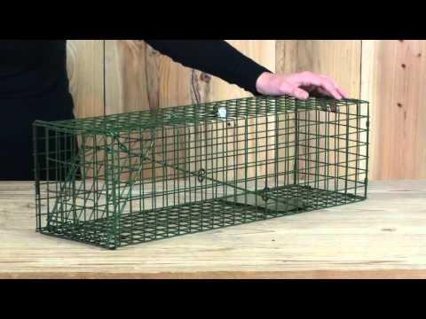 Medium Animal Cage Trap - Squirrel Trap