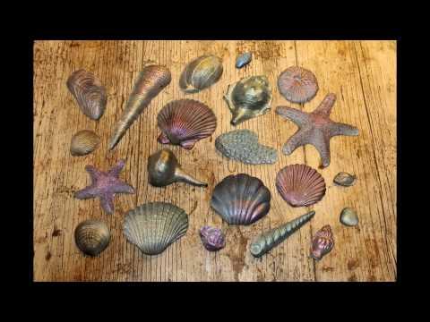 Air Brushed SeaShells