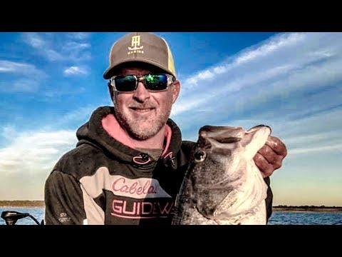 SQUIRREL FISHING Tips - Unbelievable Pre-Spawn Bass Secret