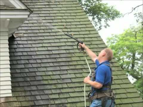 How to get rid of moss on roof with Moss Buster®