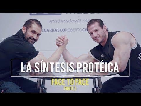 TODO SOBRE LA SÍNTESIS PROTÉICA | Face to Face - PARTE 3