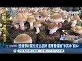 台灣香菇有