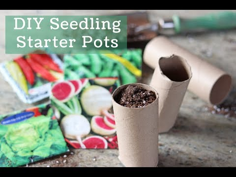 Free Seed Starting Pots, DIY Toilet Paper Tube Pots