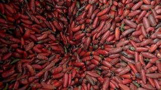 How Sriracha Is Made