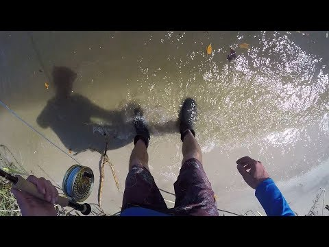 Searching for A Snook on the Fly and Surf Fishing for Sharks!