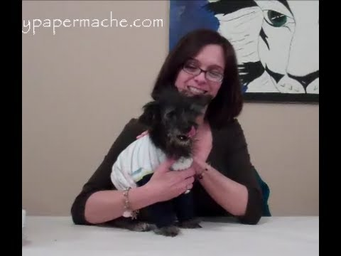 How 2 Make A Dog Sweater from Recycled Baby Sweaters
