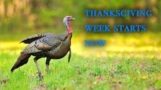 Thanksgiving week starts now