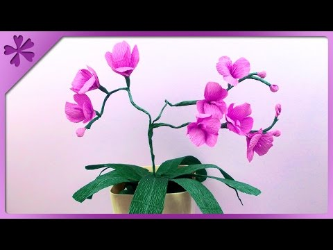 DIY Tissue paper orchid (ENG Subtitles) - Speed up #113