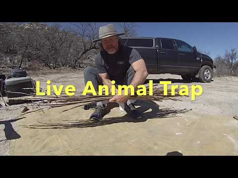 To Kill or Not to Kill - Live Animal Trap