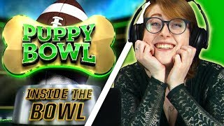 Irish People Watch The Puppy Bowl For The First Time