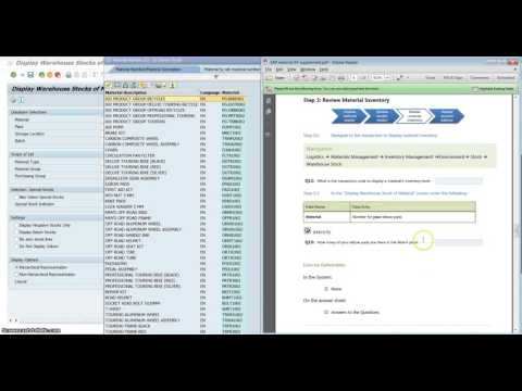 SAP check your material inventory
