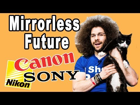 The Future Of NIKON & CANON's Pro Mirrorless Cameras (vs SONY)