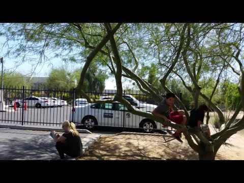 Arizona driving test,Medina MVD Arizona vožnja test