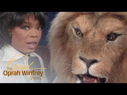 Original Jumanji Special Effects Wow Oprah | The Oprah Winfrey Show | Oprah Winfrey Network