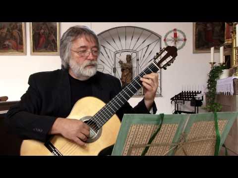 Vivaldi Concerto D Major for two guitars - Milorad Romic