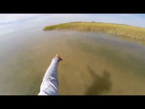 Redfish Fishing on the Flats(sight casting, skinny water)