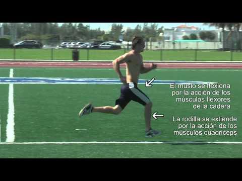 como correr mas rapido: la fase de impulso