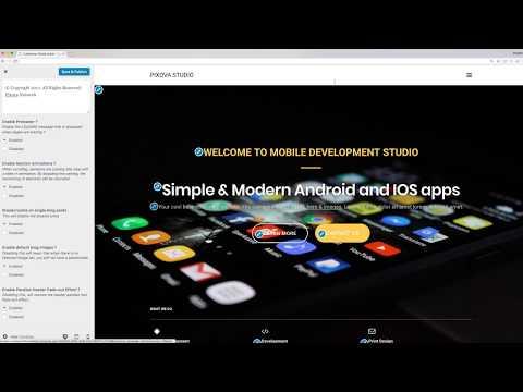 Pixova Theme Options Walkthrough - How To Customize