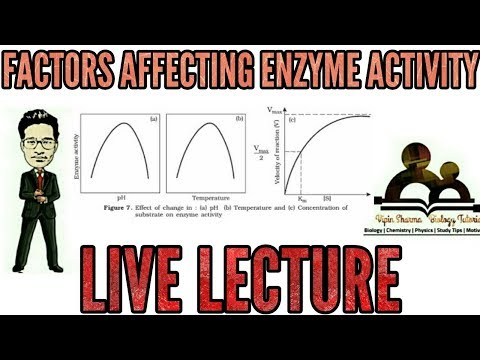 Factors affecting enzyme activity l enzymes for NEET AIIMS and JIPMER.