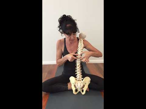Heal Yourself - Low Back Pain & Spinal Stability