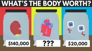 How Much Is The Human Body Worth?