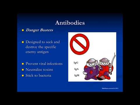IgG Subclass & Specific Antibody Deficiency