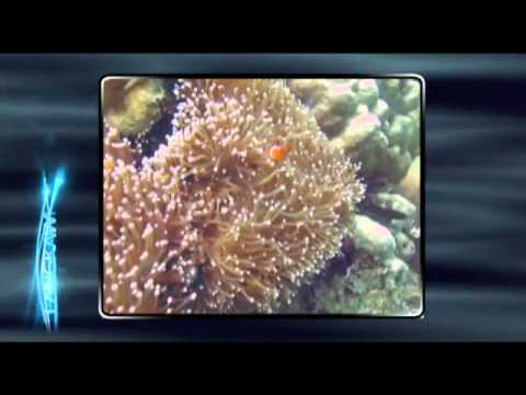 Travel and watch Langkawi Island Video.flv