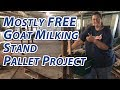 A Better Mostly FREE Goat Milking Stand Pallet Project