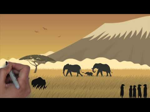 Protect Endangered African Wildlife Animals And Species