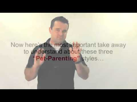 The 4 Pet Parenting Styles