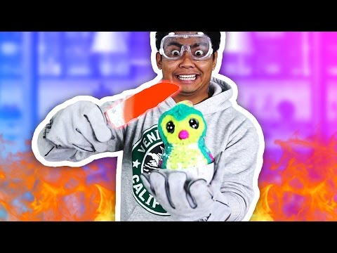 1000 DEGREE KNIFE VS HATCHIMAL!