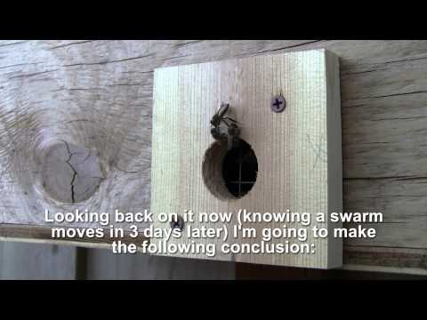 Bait Hive, the easiest way to catch a swarm - Bee Vlog #90 - Apr 25, 2013