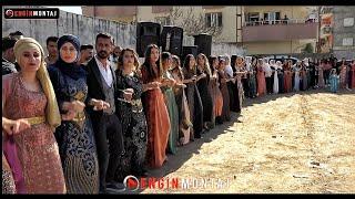 Rojhat Ciziri - Silopi Düğünü. Taşkın Ailesinin Nişanı - Taşkın Taşkın'nin Nisani Part.1