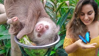Visiting Rescued Sloths in Costa Rica