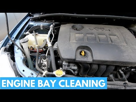 How To CLEAN and DRESS Engine Bay - Prepping Car For Sell- Engine Cleaning Tips