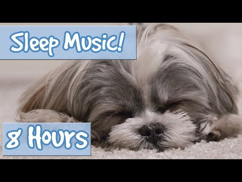 The Ultimate Dog Sleep Soundtrack! Soothing Tones, Relaxing Music to Calm Dogs and Relieve Anxiety🐶