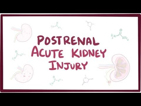 Postrenal acute kidney injury (acute renal failure) - causes, symptoms, & pathology