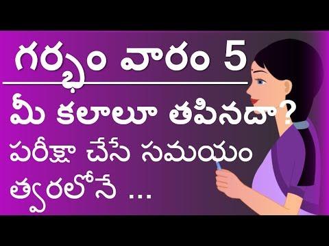 Pregnancy Telugu Week by Week    Week 5 