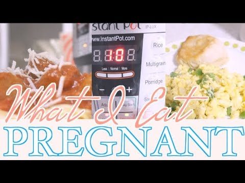 What I Eat in a Day While Pregnant & Instant Pot Recipe | steffiethischapter