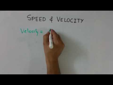 Hindi: Speed & Velocity