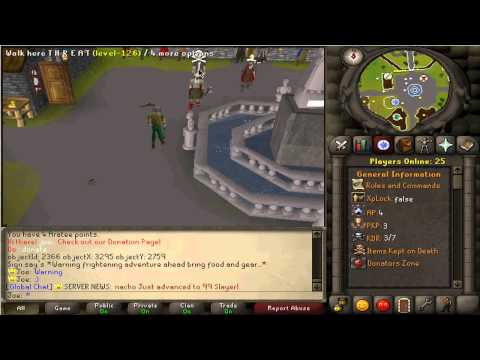 Aratee - Actual 317 - RuneScape Private Server - New RSPS - Running on VPS - RS 06 - runescape 2007