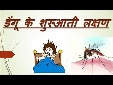 symptoms of dengue fever in hindi. डेंगू के लक्षण क्या हैं ?