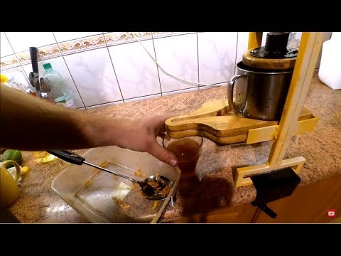 Mini Apple Fruits Cider Press DIY