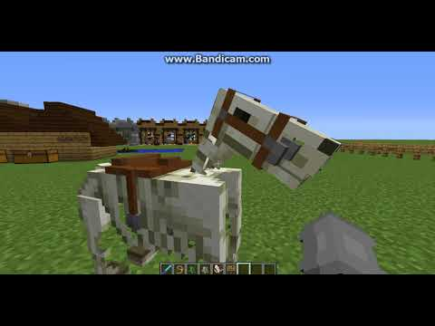 How to Tame the Skeleton Horse and Zombie Horse in Minecraft!